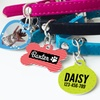 Up to 69% Off Personalized Pet Tags from Photobook America