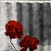 "Poppy 72"" x 72"" Fabric Shower Curtain"