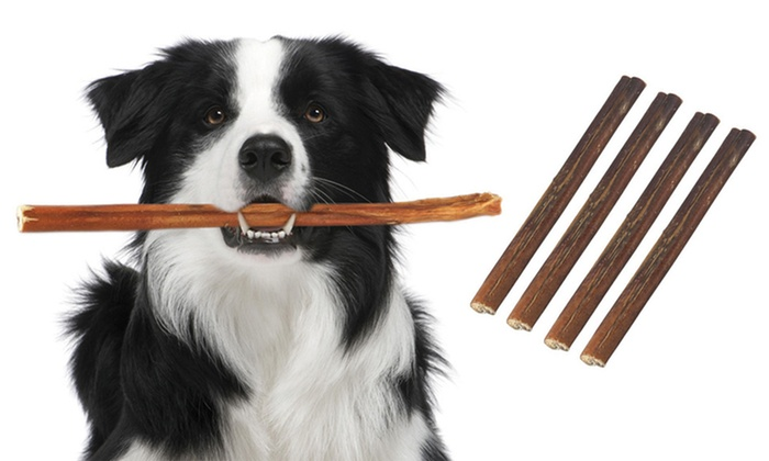 6 bully sticks dog treats groupon. Black Bedroom Furniture Sets. Home Design Ideas
