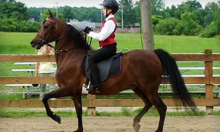 Lookaway Farm - Sharon: One or Two English-Style Horseback-Riding Lessons at Lookaway Farm (Up to 58% Off)