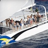 Up to 54% Off Tours from Makani Catamaran