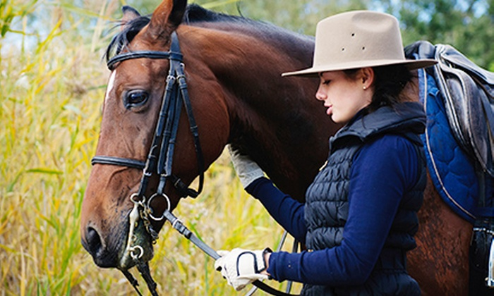 Broken Bow Ranch - Crandall: 60-Minute Horseback Trail Ride for One or Two at Broken Bow Ranch (Up to 51% Off)