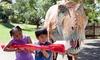 Santa Barbara Zoo – Up to 33% Off Visit