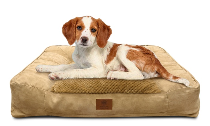 Akc Memory Foam Large Sofa Bed For Dogs Groupon