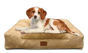 AKC Memory Foam Large Sofa Bed for Dogs at AKC Memory Foam Large Sofa Bed for Dogs, plus 9.0% Cash Back from Ebates.