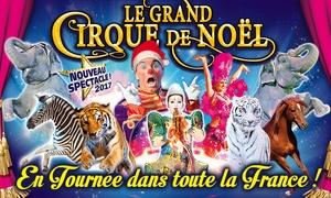 Le Grand Cirque de Noël: 1 place en tribune d'honneur pour assister à l'une des représentations du Grand Cirque de Noël dès 10 €