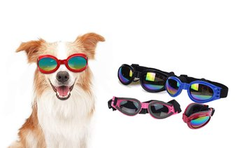 Foldable Dog Goggles
