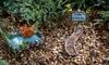 Fairy Garden Miniature Set