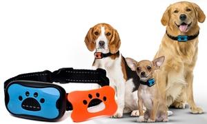 Collier anti-aboiement chien