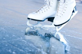 Life on Ice: $16 for $35 Worth of Services — Life on Ice