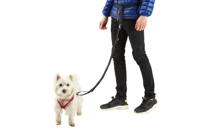 Hands Free Dog Walking Belt Uk