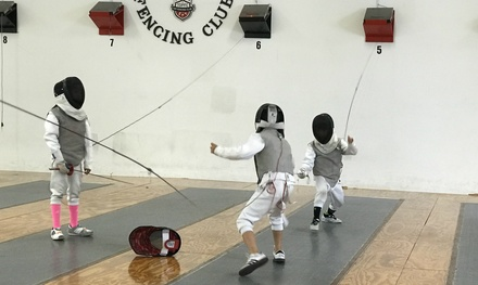 Fencing Packages at Top Fencing Club (Up to 66% Off). Two Options Available.