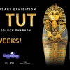 Up to 33% Off KING TUT: TREASURES OF THE GOLDEN PHARAOH