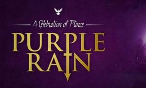 Purple Rain: A Celebration of Prince: Ticket to Purple Rain Live, 3 September–21 December at Multiple Locations