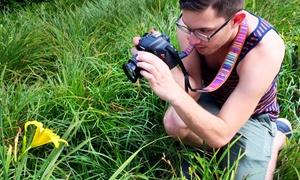 Josh Aron Design: Up to 72% Off Photography Tour at Josh Aron Design