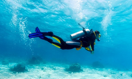 $140 for a Four-Day PADI Open-Water Scuba-Certification Course from Pacific Beach Sports ($350 Value)