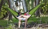 Portable 2-Person Hammock: Portable 2-Person Hammock