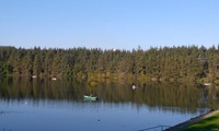 Four Hours of Fly Fishing in a Boat for One or Two at Beecraigs Trout Fishery