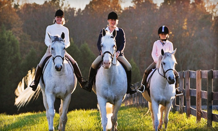 Fairview Farms LLC - New Bloomfield: 6 or 10 30-Minute Horseback-Riding Lessons at Fairview Farms LLC (Half Off)