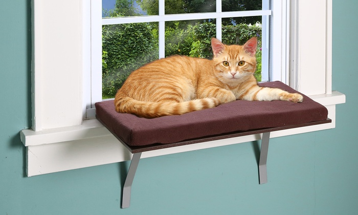 Deluxe Cat Window Perch Bed Groupon