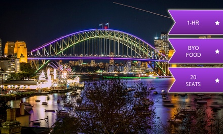 OneHour Vivid Cruise for One Child $19 or Adult $29 with Thunder Jet Up to $59 Value