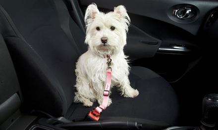 Bunty Haustier-Sicherheitsgurtfür Hunde und Katzen in der Farbe nach Wahl