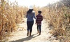 Up to 48% Off Admission to Corn Maze at Pumpkinville Corn Maze