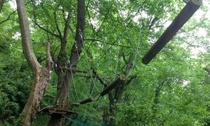 Quercus Park Parco Avventura: Ingresso al parco per adulti e bambini da Quercus Park Parco Avventura (sconto fino a 53%)