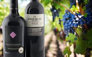 Silkes Weinkeller: Wertgutschein über 50 € oder 100 € anrechenbar auf das gesamte Sortiment von Silkes Weinkeller