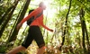 Harrison Heritage Walking Tours - Harrison Hot Springs: Historic Walking Tour of Harrison Hot Springs for Two or Four from Harrison Heritage Walking Tours (Up to 52% Off)