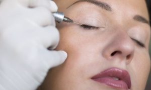 BEAUTY CENTER SNELLISSIMA: Seduta di trucco semipermanente per occhi o sopracciglia da Beauty Center Snellissima (sconto 78%)