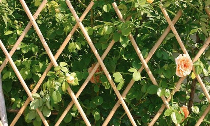Steccato Estensibile Giardino : Steccato in bambù groupon goods