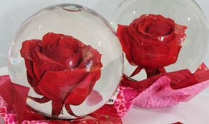 Valentine-Flower Pickup