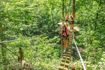 Aerial Adventure Park Admission for One, Two, Four, or Six to TreEscape Aerial Adventure Park (Up to 40% Off)