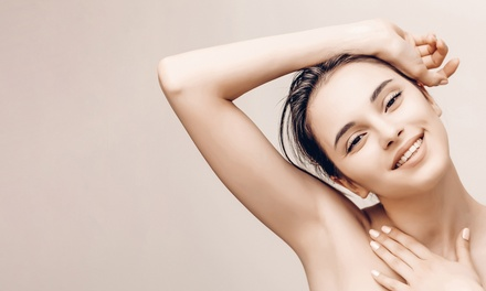 Six Laser Hair-Removal Sessions on Small, Medium, or Large Area at The Laser Spot (Up to 84% Off)