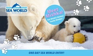 Sea World: Sea World: Child ($69) or Adult ($79) Single Day Pass (Up to $89 Value*)