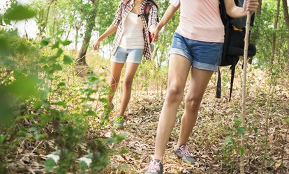 image for Two or Four Laser Spider-Vein Removal Treatments with Consultation at Colorado Laser and Vein (Up to 80% Off)