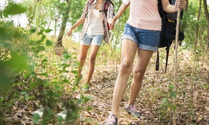 Colorado Laser and Vein: Two or Four Laser Spider-Vein Removal Treatments with Consultation at Colorado Laser and Vein (Up to 83% Off)