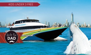 Gold Coast Whale Adventures: Whale Watching Cruise and Snacks: Child ($39) or Adult ($59) with Gold Coast Whale Adventures (Up to $99 Value)
