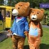 Teddy Bear Picnic Entry