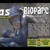 Entrada a Bioparc