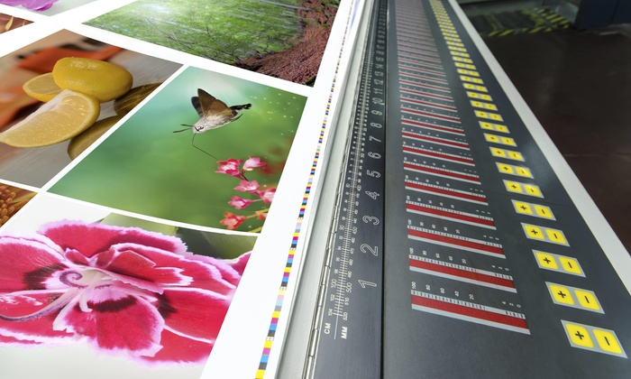 Publi Signs - Fort Lauderdale: Photo Printing Services at Publi Signs (75% Off)