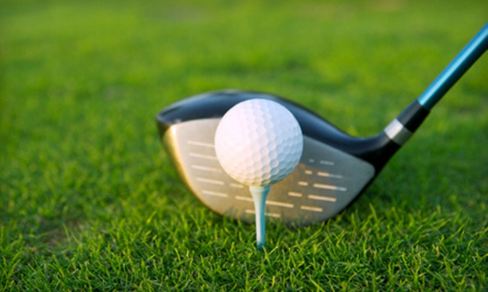 Golf Etc. - Heath: 5 or 10 One-Hour Indoor Hitting-Bay Sessions, or Video Swing Analysis and Club Fitting at Golf Etc. in Heath (Up to 53% Off)