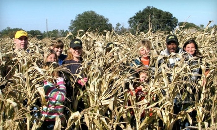 Conner's A-Maize-Ing Acres - Hilliard: Farm-Themed Activities at Conner's A-Maize-Ing Acres in Hilliard. Two Options Available.