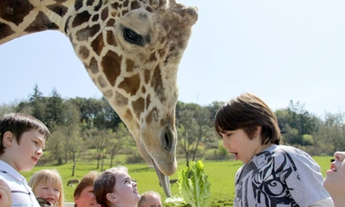 Wildlife Safari - Winston: $18 for Two Adult Tickets ($35.98 Value) or $12 for Two Child Tickets ($23.98 Value) to Wildlife Safari in Winston