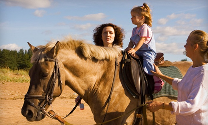 Bosque Circle Ranch - Bosque Dell Acres: Horseback-Riding Lesson at Bosque Circle Ranch or Donation to Care for Rescued Horses at Walkin' N Circles Ranch