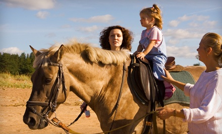 Bosque Circle Ranch: $5 Donation to The Walkin' N Circles Ranch - Bosque Circle Ranch in Albuquerque