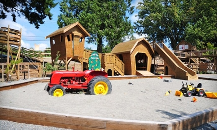 Maan Farms - South Poplar: $6 for the Farm Fun Package for Two at Maan Farms ($12 Value)