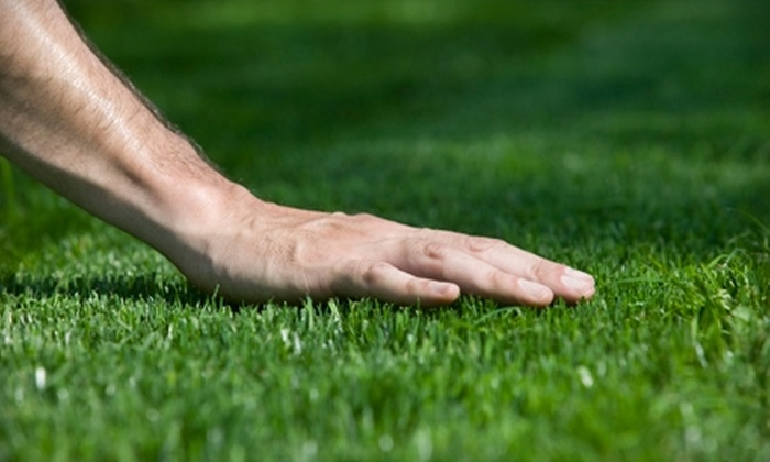 Lawn Pro Lawn Care - Laplace: $20 for a Lawn-Service Package from Lawn Pro Lawn Care ($40 Value)
