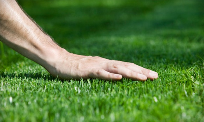 Greenside Lawncare - Saint Charles: Quarter-Acre, Half-Acre, or Full-Acre Core Lawn Aeration from Greenside Lawncare